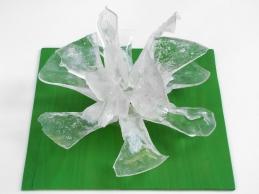 floare de gheata-3- 2