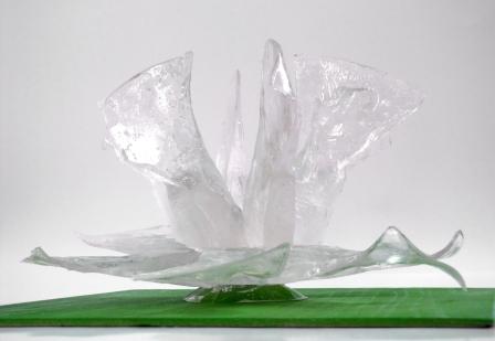 floare de gheata-3- 3