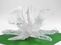 floare de gheata-3- 5